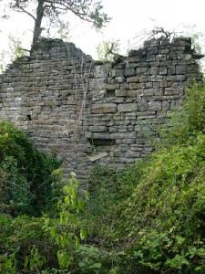 Restos monasterio de Burdaspal