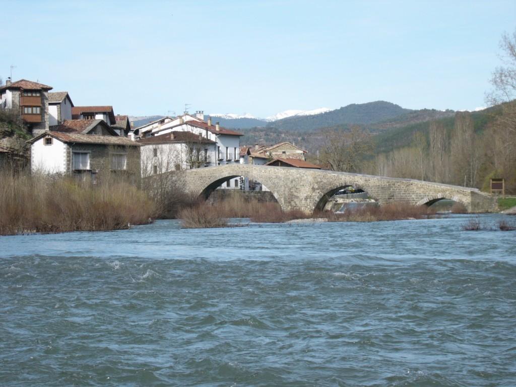 Puente y río 2008 (2)